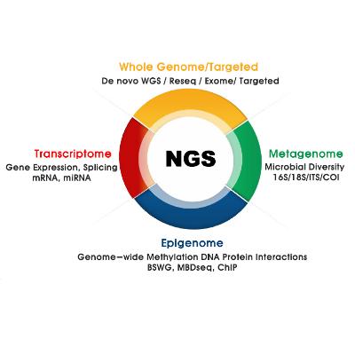 บริการวิเคราะห์ลำดับเบสแบบ Next Generation Sequencing (NGS)