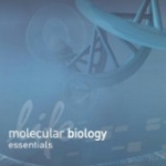 Life Technologis Molecular Biology Essentials Catalog 2011