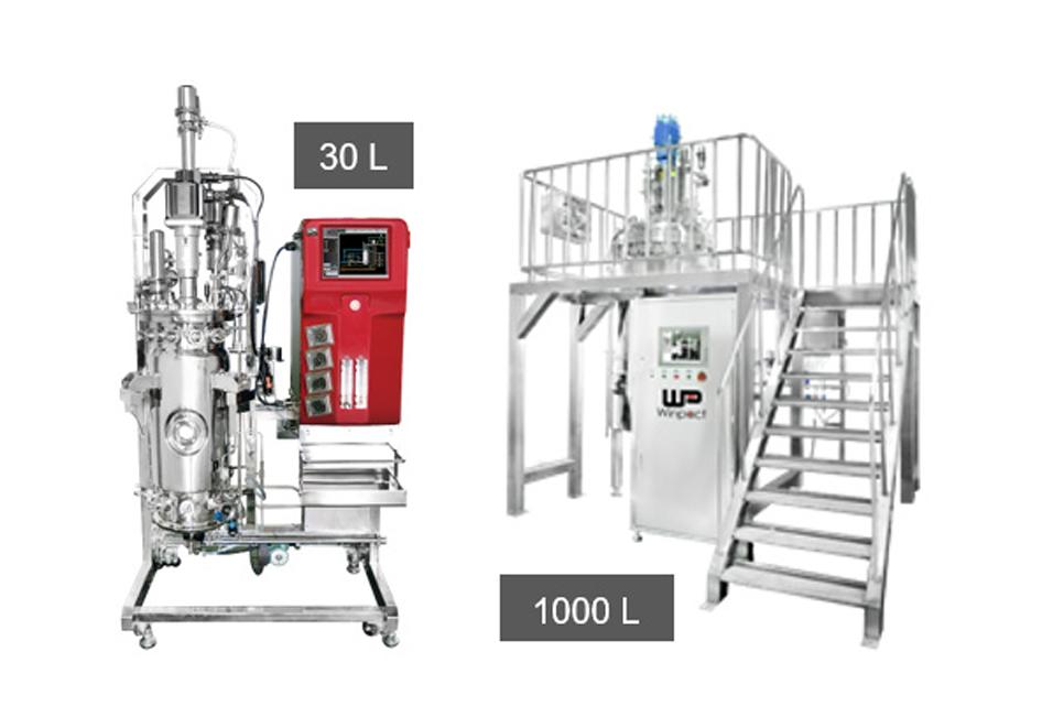 ถังปฏิกรณ์ชีวภาพระดับอุตสาหกรรม Pilot & Production Scale Fermentation System