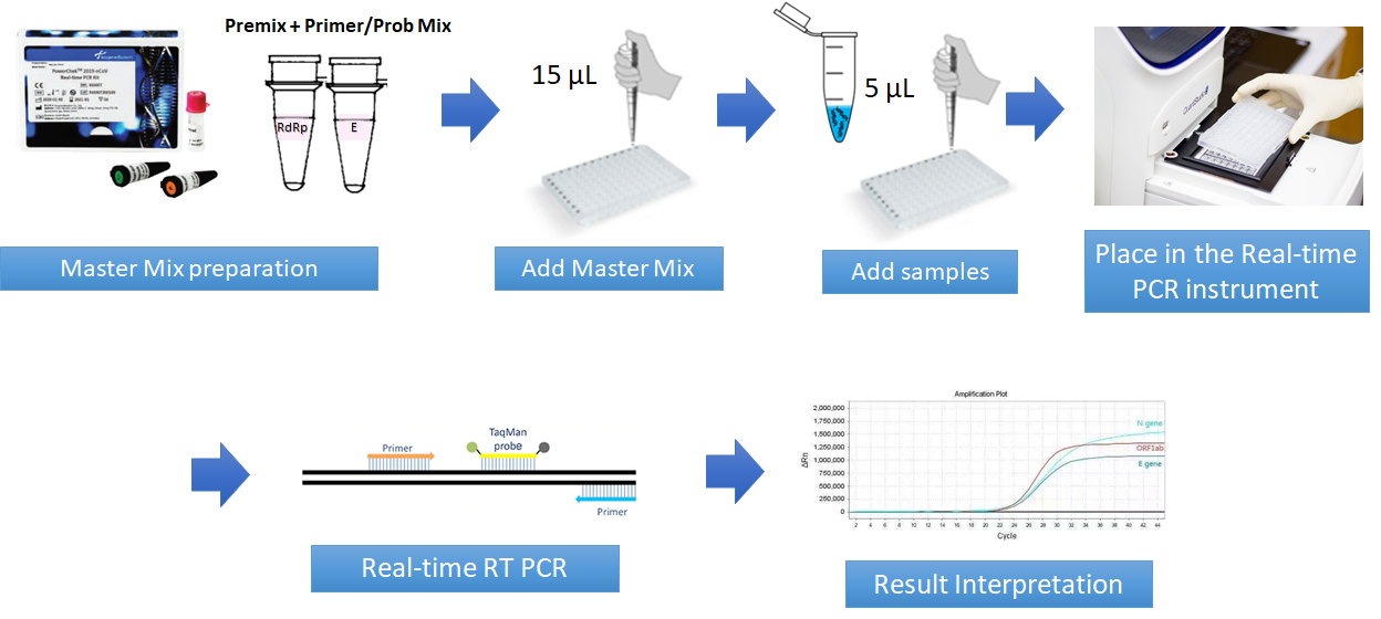 PowerChek 2019-nCoV Real-time PCR kit