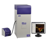 iBox Explorer, Fluorescence Imaging Microscope