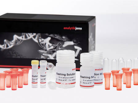 INNUPREP BLOOD DNA MINI KIT, 250 RXNS