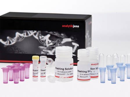 INNUPREP DNA/RNA MINI KIT, 50RXNS