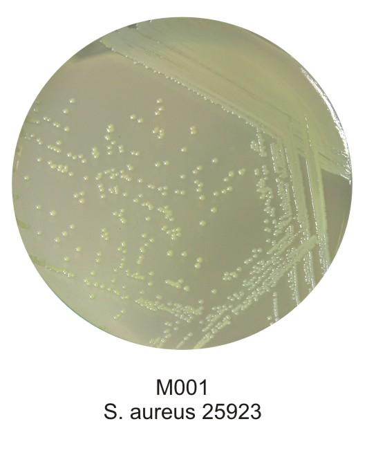 1HMD-M001-500G