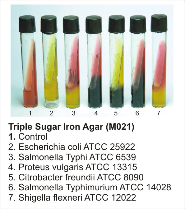 TRIPLE SUGAR IRON AGAR, 500 G.
