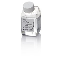 DNASE/RNASE FREE DISTILLED WATER, 500 ML