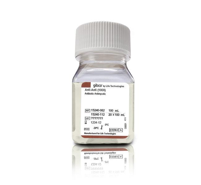 ANTIBIOTIC-ANTIMYCOTIC, 100 ML