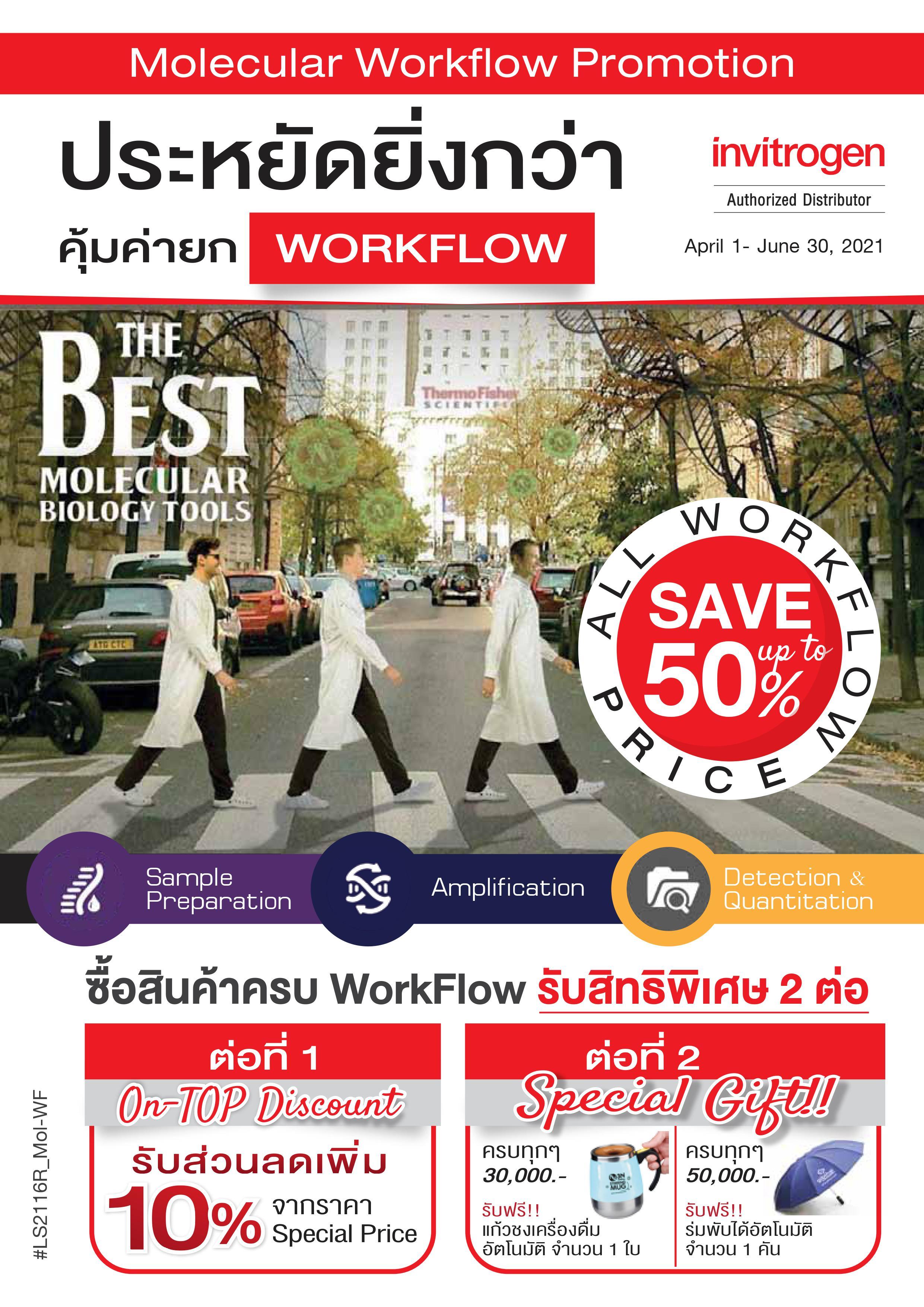 Molecular Workflow Promotion
