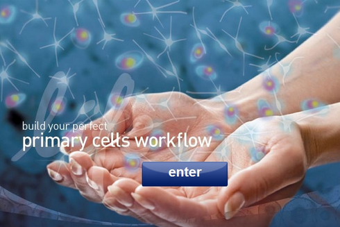 Primary Cell Workflow Tool