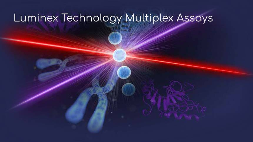Luminex Technology Multiplex Assays