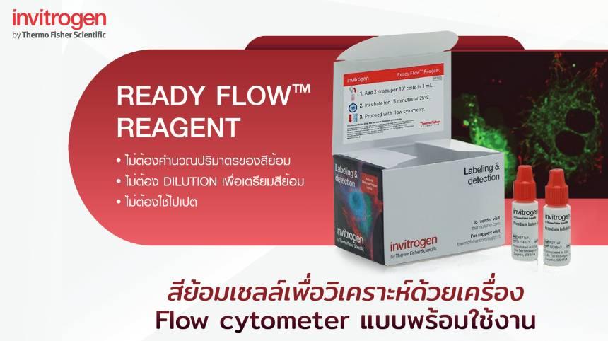 Invitrogen™ Ready Flow™ Reagent