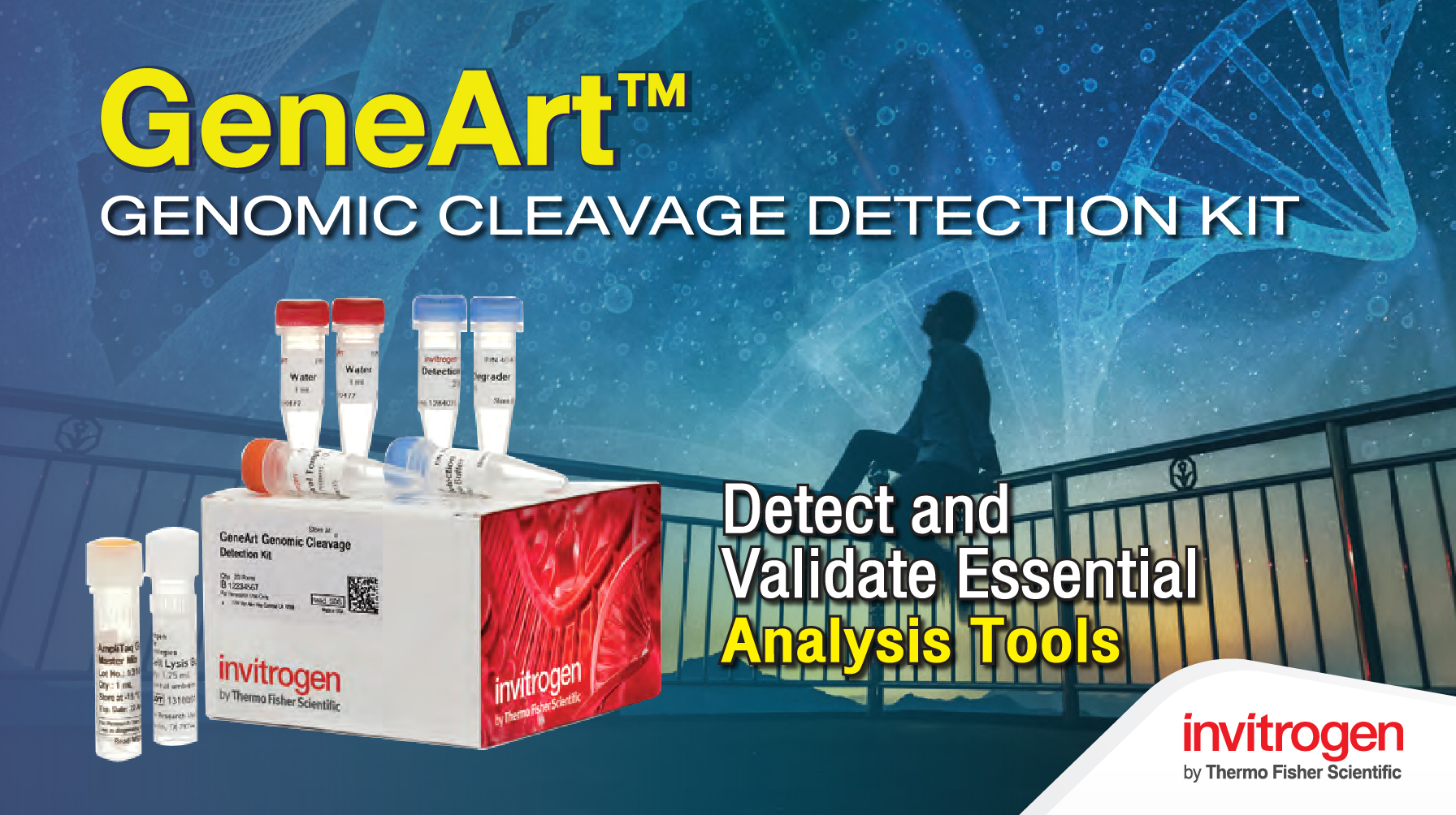 GeneArt™ Genomic Cleavage Detection Kit