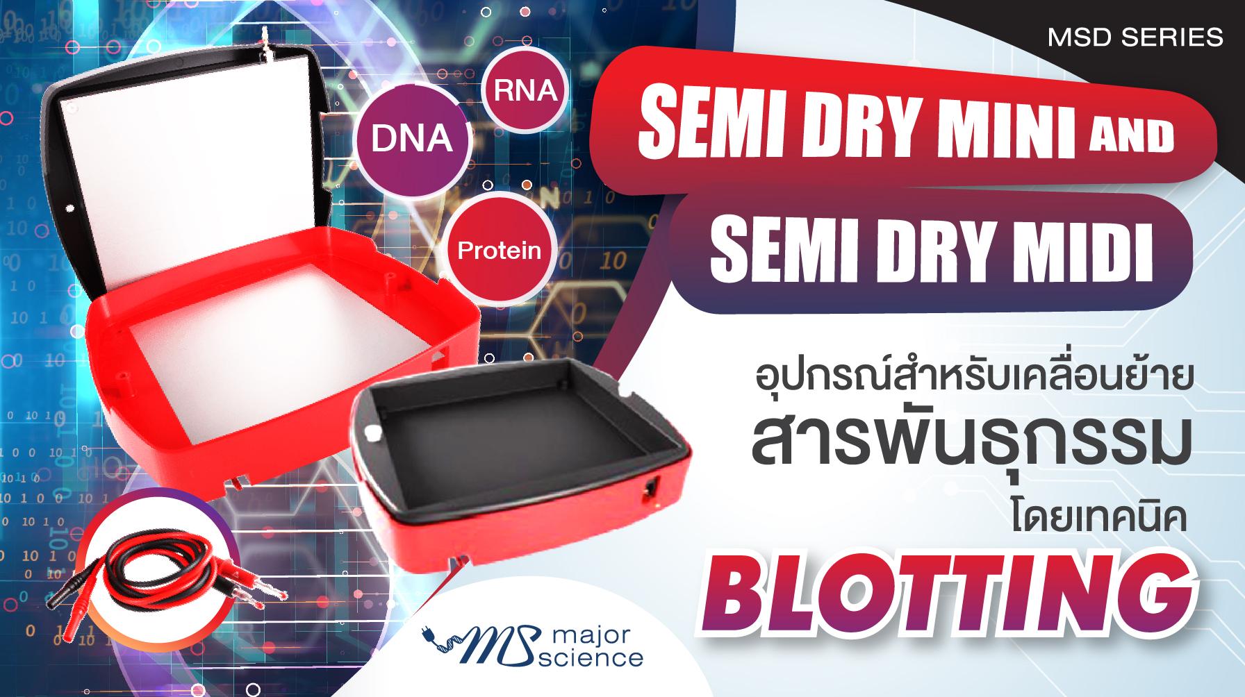 Semi Dry Blotting
