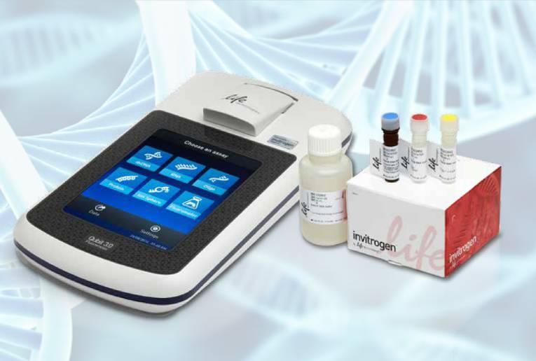Protein Assay using Fluorescent Dye Method