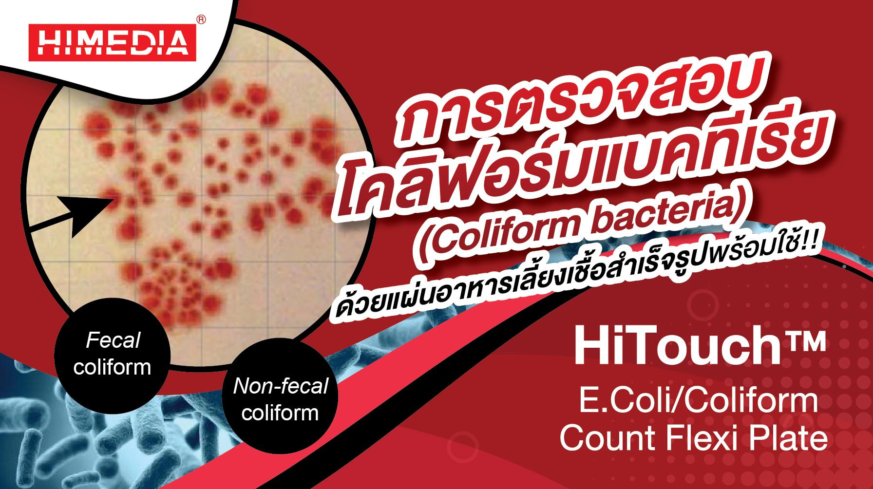 การตรวจสอบโคลิฟอร์มแบคทีเรีย (Coliform bacteria)