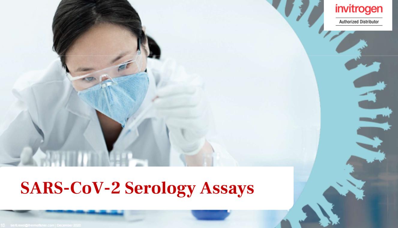 การตรวจทางภูมิคุ้มกันหรือแอนติบอดีที่จำเพาะต่อ SARS-CoV-2 (SARS-CoV-2 Serology Assays)