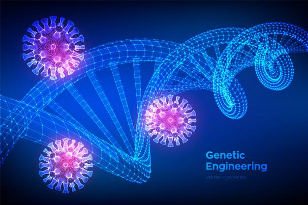 Covid-19 DNA Squence & Label Primer ของยีนต่างๆ